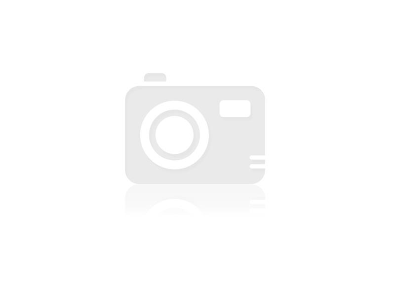 TF GB Pied 15cm (12001)
